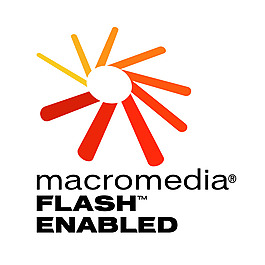 Macromedia Flash 1